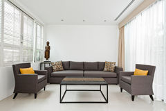 Sala de estar brillante con el sofá gris Imagen de archivo