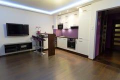 Sala de estar con el interior de la cocina Imagen de archivo libre de regalías