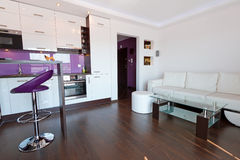 Sala de estar con el interior de la cocina Fotografía de archivo