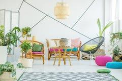 Sala de estar con las plantas y los taburetes Fotos de archivo