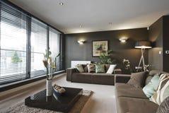 Sala de estar de lujo contemporánea foto de archivo libre de regalías