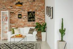 Sala de estar de moda con las plantas fotos de archivo