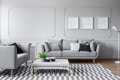 Sala de estar elegante con dos sofás grises cómodos con las almohadas y gráfico en la pared foto de archivo