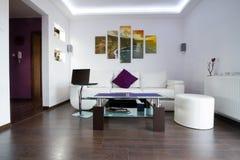 Sala de estar moderna con los acantilados de la lona de Moher fotos de archivo libres de regalías
