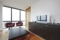 Sala de estar moderna con muebles contemporáneos imagen de archivo
