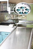 Sala de operaciones veterinaria Imágenes de archivo libres de regalías