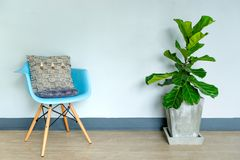Sala de visitas da luz de Fiddle Leaf Fig Tree Natural fotos de stock