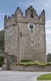Sala del castillo Imagen de archivo libre de regalías
