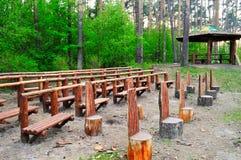 Sala della foresta Immagine Stock