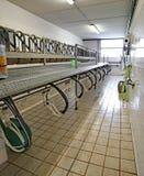 sala di mungitura per le capre e le pecore degli animali da allevamento Immagine Stock