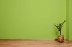 Sala interior com assoalho, a planta e a parede de madeira no verde com um contato bonde na parede e no contorno de madeira fotografia de stock