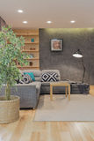 Sala moderna com sofá cinzento Fotos de Stock Royalty Free