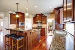 Sala moderna da cozinha com armários de carvalho Imagens de Stock Royalty Free