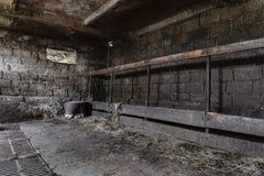 Sala suja e escura da exploração agrícola para as vacas fotografia de stock