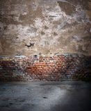 Sala velha vazia Foto de Stock Royalty Free