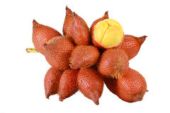 Sala or Zalacca. Sweet and sour fruit from Thailand isolated on Stock Photos