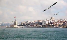Salacak en invierno Foto de archivo