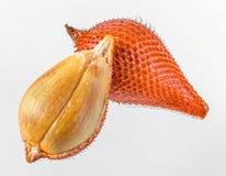Salacca или zalacca Стоковое Изображение