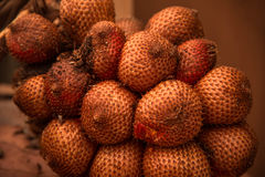 Salacca-Früchte Lizenzfreies Stockfoto