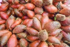Salacca Frucht Lizenzfreies Stockbild