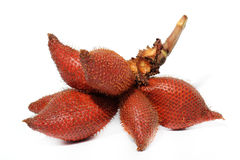 Salacca or zalacca fruit Stock Photos