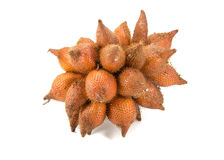 Salacca or zalacca Stock Image