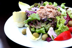 Salad. The tuna salad in the sunny day royalty free stock photo