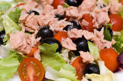 Salad. Fresh summer salad from olives, salad and tuna leaves Royalty Free Stock Images