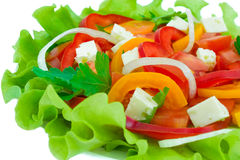 Salad. Royalty Free Stock Photography
