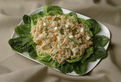 Salad. Source of cold rice salad with tuna, cheese and lettuce on bottom of fabric Royalty Free Stock Photo
