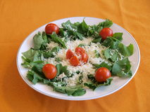 Salad. Plate filled with a fresh salad of green lettuce, tomatoes and grated cheese stock photography