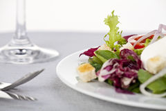 Salad, Stock Images