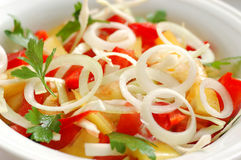 Salad. Fresh green salad with tomato and onion close up Stock Photography