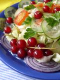 Salad. Vegetable salad with red currant Royalty Free Stock Photo