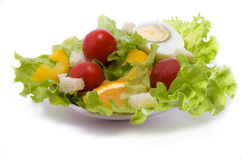 Salad. With tomato, egg and bread cooking for dinner Royalty Free Stock Image