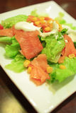Salad. With fresh salmon,lettuce,niblet and  dressing Stock Photography