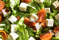 Salad. Fresh vegetable salad with Mediterranean dressing. Lettuce, cherry tomatoes, cheese, olive oil and herbs royalty free stock photography