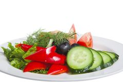 Free Salad Royalty Free Stock Photography - 16894517