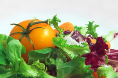 Salad. Healthy vegetarian salad on the white plate Royalty Free Stock Image