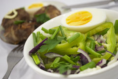Salad. Prepared dish from salad and meat Stock Images