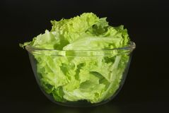 Salad. Green salad in a transparent bowl Royalty Free Stock Image