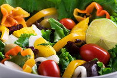 Salad. With fresh vegetables and eggs Royalty Free Stock Images