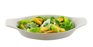 Caesar salad. A Caesar salad in a white dish, isolated on white background stock image