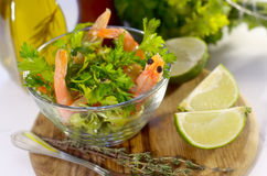 Salad. Or apetizer with shrimps Stock Image