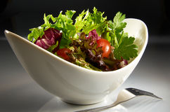 Salad. In white bowl with mood lighting Royalty Free Stock Photography