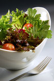 Salad. In white bowl with mood lighting Royalty Free Stock Photo