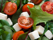 Salad. With lettuce, cherry tomatoes and cheese with diced Stock Photo