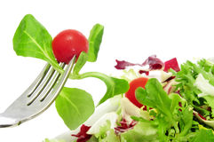 Salad. Closeup of a plate of salad with cherry tomatoes royalty free stock photos