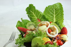 Salad. Closeup salad appetizer healthfulness delicious Stock Photos