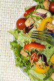 Salad. A health dinner salad with lots of greens Royalty Free Stock Photography
